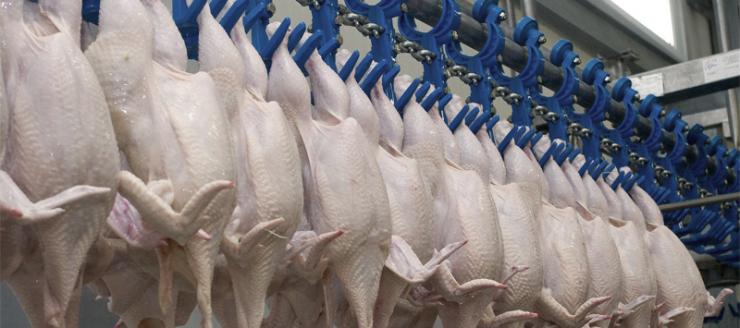 Паста с пищевым допуском EFELE MP-491 для узлов оборудования по производству продуктов питания